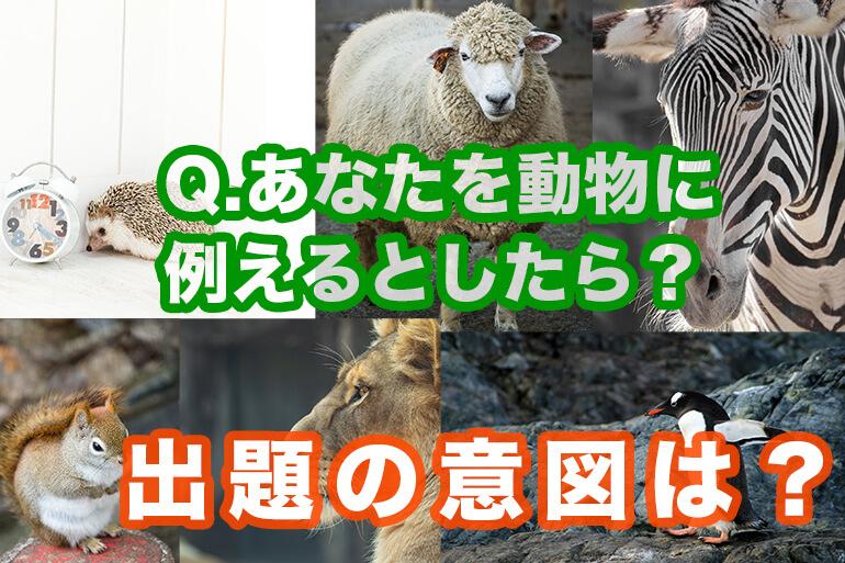 あなたを動物に例えると?という無茶な質問。面接官の意図は?
