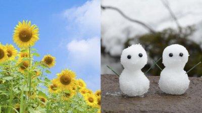 夏インターンと秋冬インターンの違い