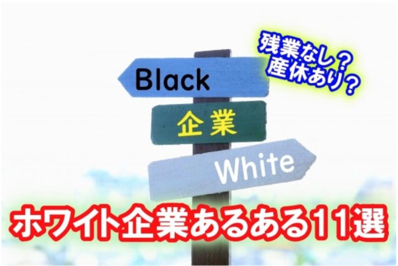 【ホワイト企業あるある11選】就職活動するなら知っておきたい!